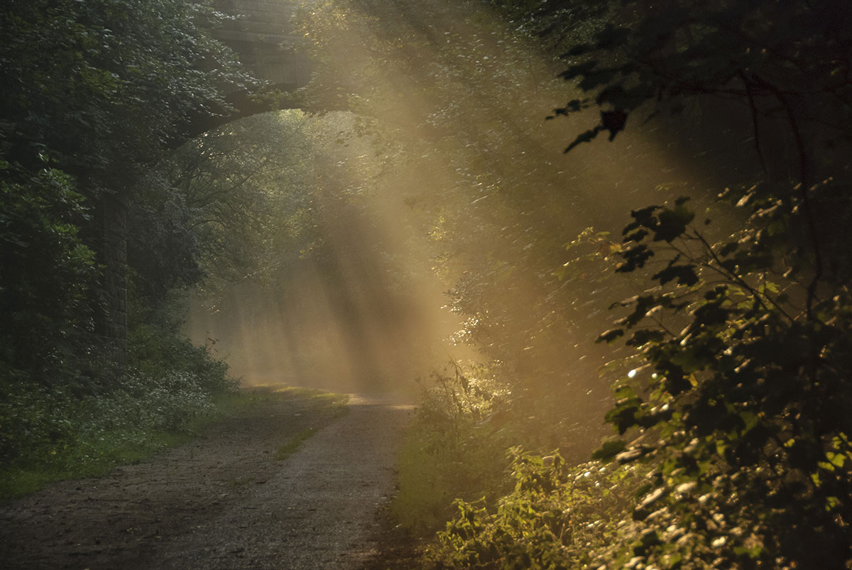 Trans Pennine Trail, Penistone